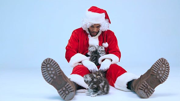 Thumbnail for Santa Claus Plays with Kittens