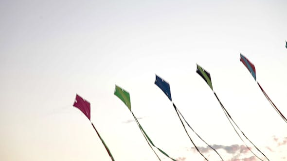 Kites Flying In The Air