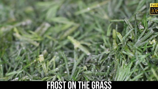 Thumbnail for Frost On The Grass