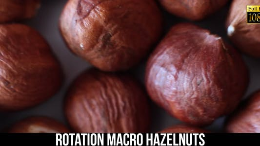 Thumbnail for Rotation Hazelnuts