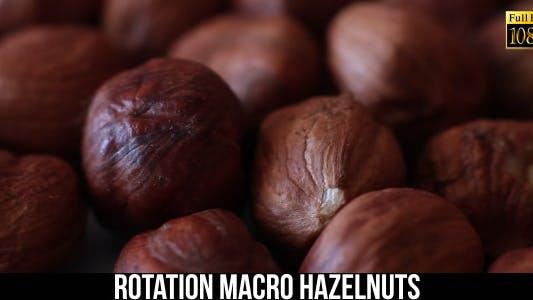 Thumbnail for Rotation Hazelnuts 3