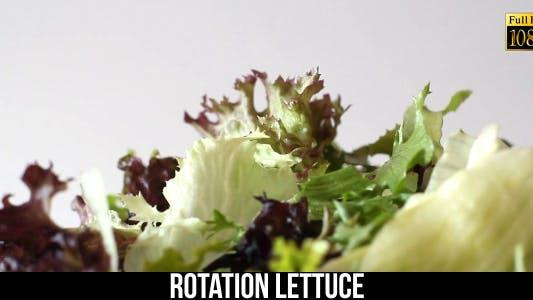 Rotation Lettuce