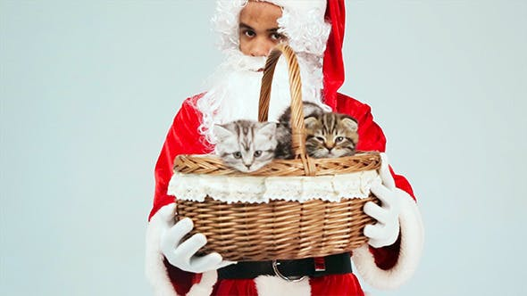 Thumbnail for Santa Claus Gives a Basket of Kittens