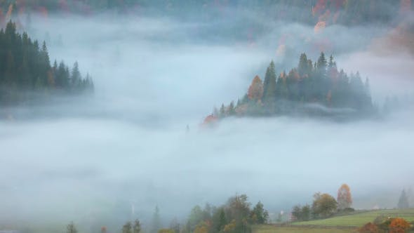 Thumbnail for Morning Fog in the Forested Mountains