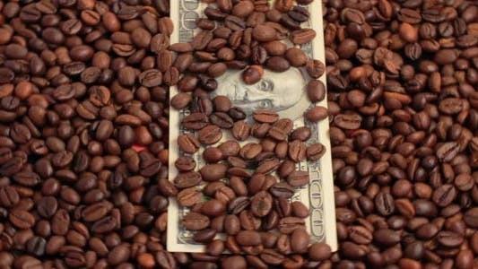 Thumbnail for Rotating Coffee Beans And U.S. Dollars