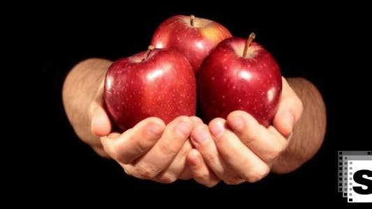 Thumbnail for Hands Holding Apples