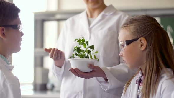 Thumbnail for Students and Teacher with Plant at Biology Class 19