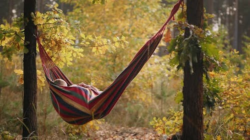 Little Boy and Girl Happy Lying in Hammock in Autumn Forest