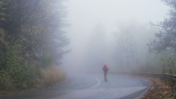 Lost Tourist Is Wandering in Spooky, Misty Forest in Rainy Day