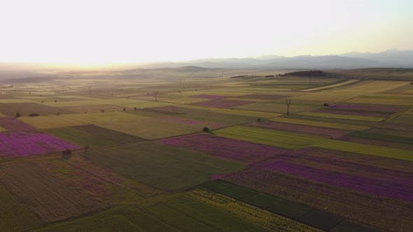 Sunset under the field Aerial View