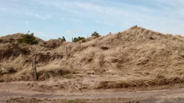 Thumbnail for Vast Meadows Towards Residential Area in Skagen