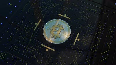 Loop Bitcoin Database - 4K