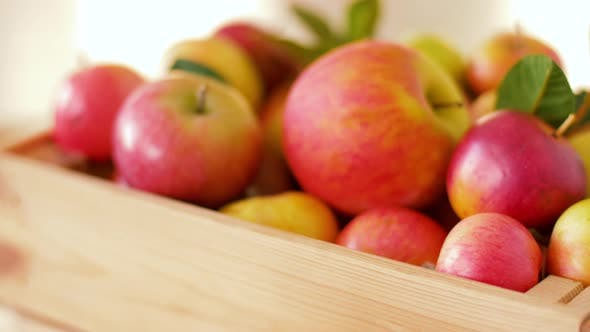Thumbnail for Ripe Apples in Wooden Box