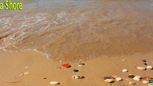 Thumbnail for Sea Shore