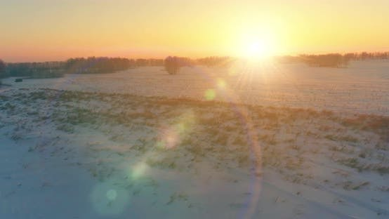 Thumbnail for Aerial Drone View of Cold Winter Landscape with Arctic Field, Trees Covered with Frost Snow