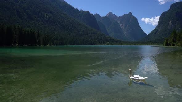 Thumbnail for Lake Dobbiaco in the Dolomites Italy