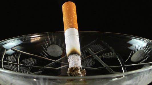 Cover Image for Cigarette 5