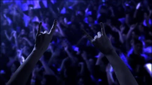 Hands doing Rock and Roll Sign over Blurred Crowd.
