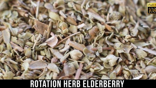 Thumbnail for Herb Elderberry