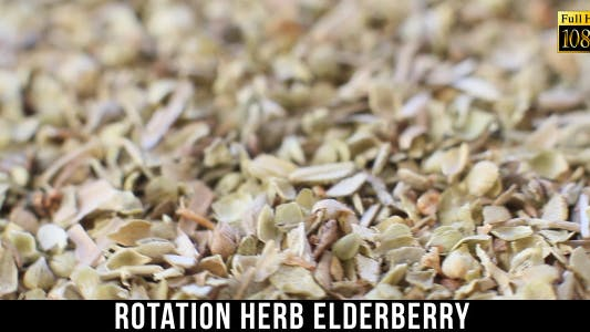 Cover Image for Herb Elderberry 2
