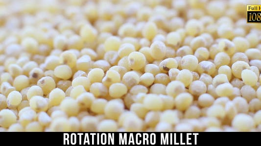 Thumbnail for Rotation Millet