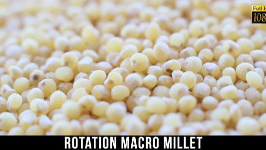 Thumbnail for Rotation Millet