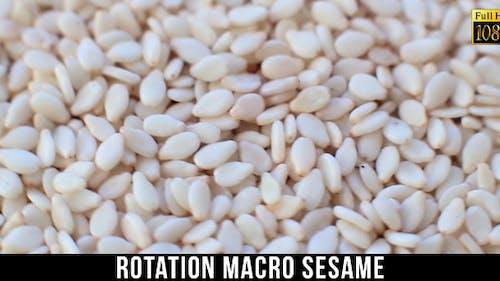 Rotation Sesam