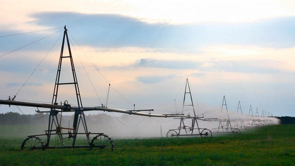 Thumbnail for Irrigation Of Agriculture Field