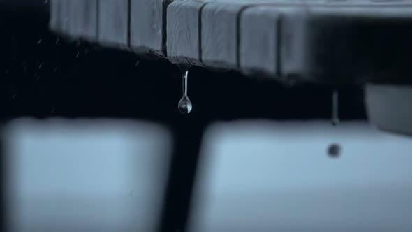 Thumbnail for Raindrops Close-Up