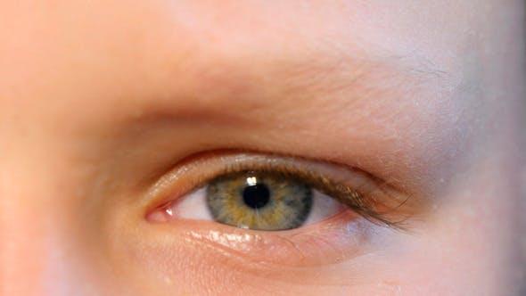 Thumbnail for Young Kid Eye