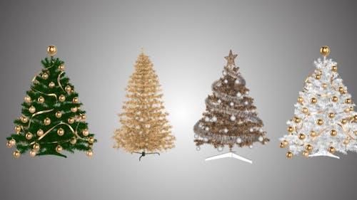 Christmas Trees Rotation