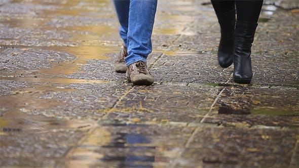 Thumbnail for Rainy Autumn