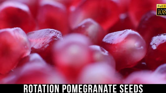 Thumbnail for Pomegranate Seeds 2