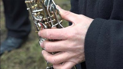 Saxophone or Sax