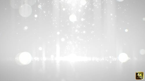 White Particle