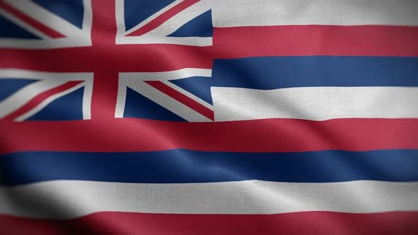 Hawaii State Flag Blowing In Wind