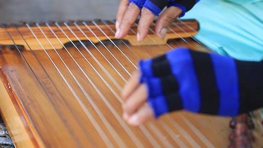 Thumbnail for Harp Performer