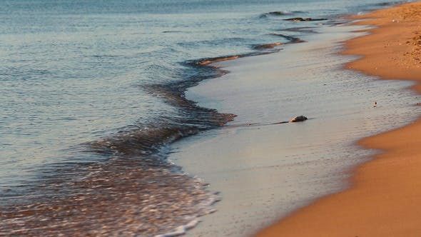 Sea Waves And Sand Beach At Dawn by Kokhanchikov on Envato Elements