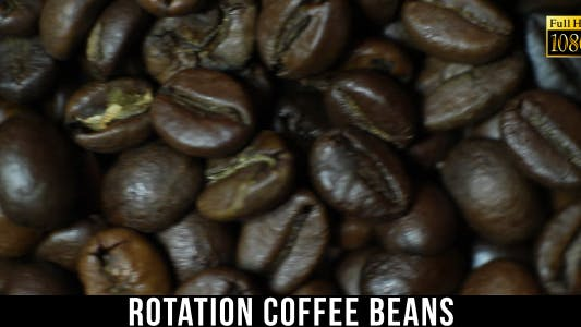 Cover Image for The Coffee Beans 4