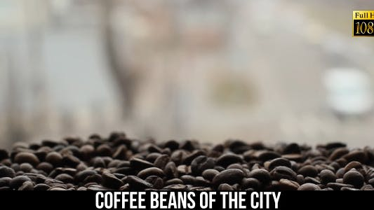 Thumbnail for Coffee Beans Of The City