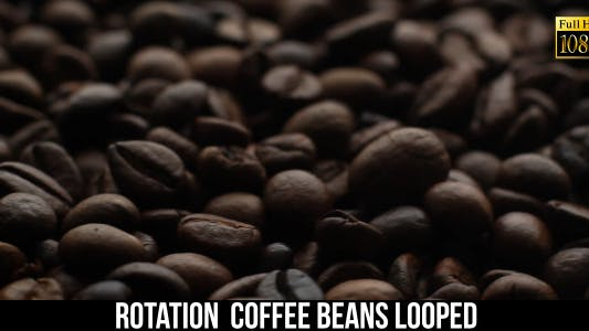 Cover Image for The Coffee Beans 7