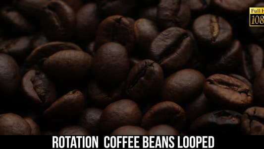 The Coffee Beans 9
