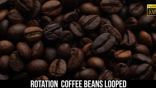 The Coffee Beans 10