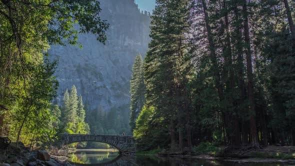 Thumbnail for River, Trees & Bridge