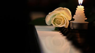 White Rose and Candle on Piano Keys