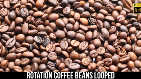 The Coffee Beans 12