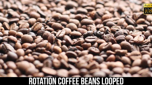 The Coffee Beans 13