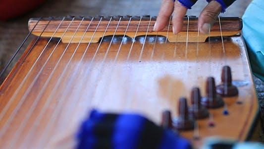 Thumbnail for Harp Performer 02