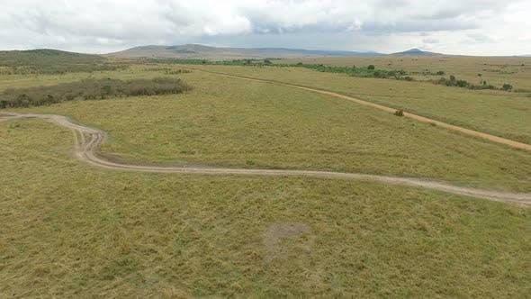 Thumbnail for Aerial shot of roads in Masai Mara
