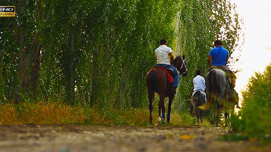 Thumbnail for Horseback Riding